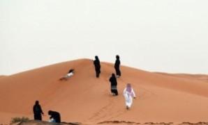 نقاط القوة والضعف في الاستراتيجية السعودية